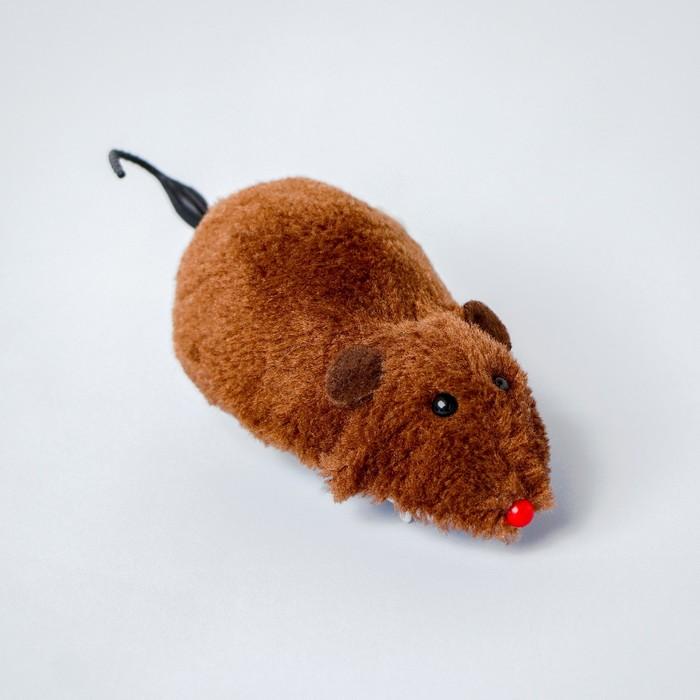 Игрушка заводная Мышка, цвета МИКС