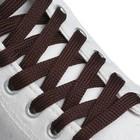 Шнурки для обуви, пара, плоские, 7 мм, 120 см, цвет коричневый