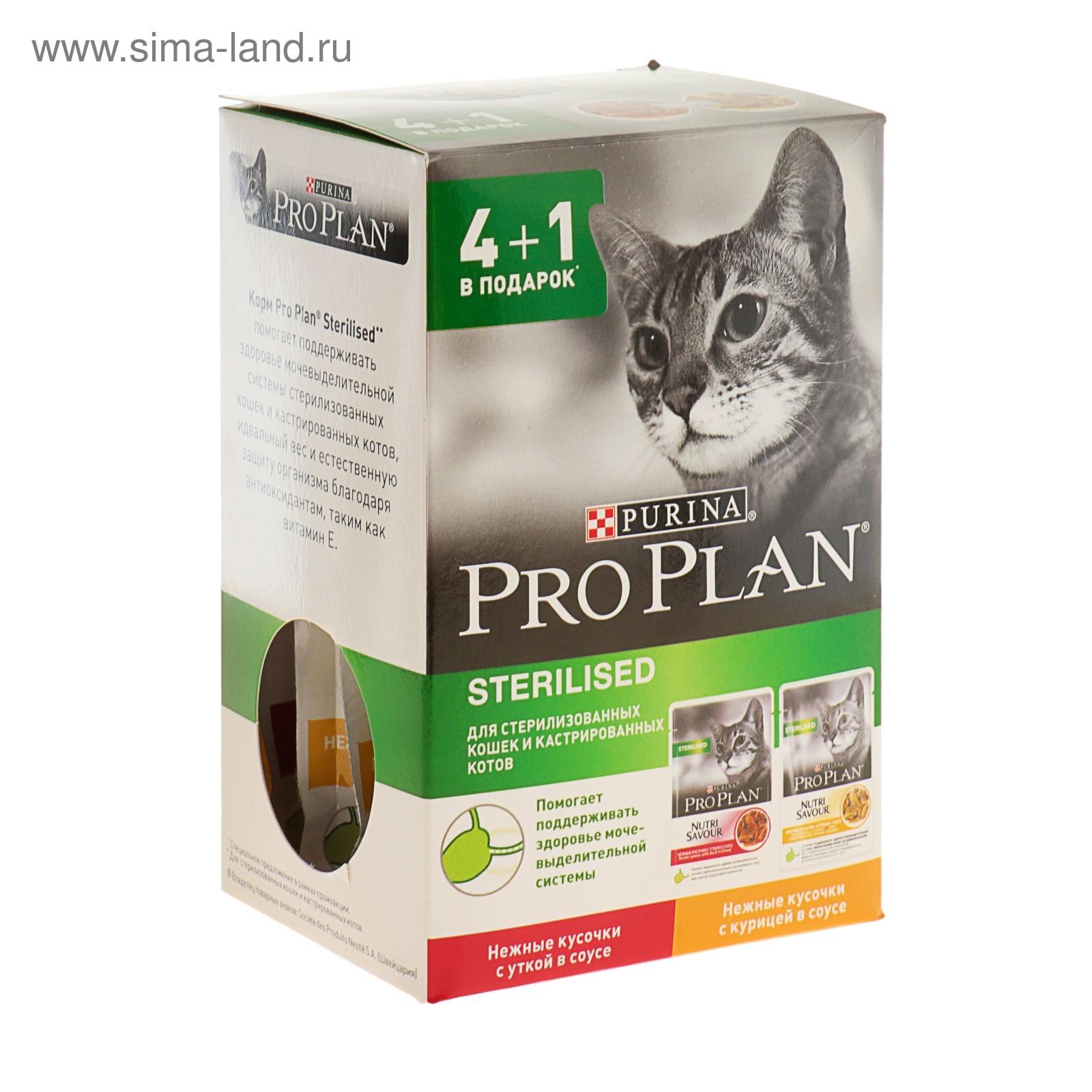 Купить влажный корм для кошек по акции