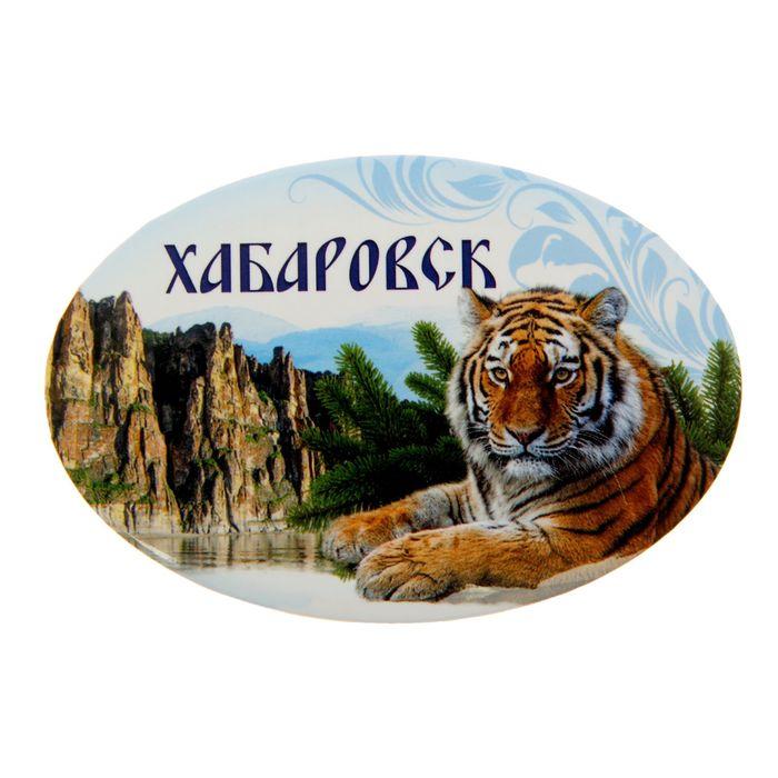Магнит-открывашка Хабаровск