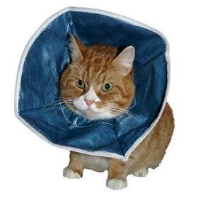 Защитный воротник Kruuse для кошек и маленьких собак, мягкий Ош