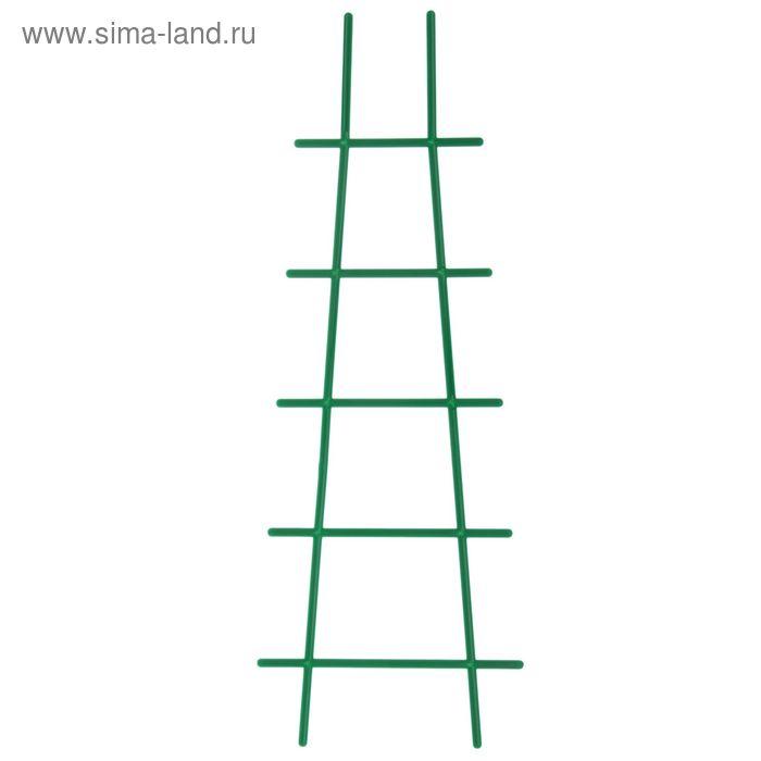 Опора для комнатных растений, цвет зеленый