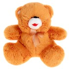 Мягкая игрушка «Медведь с бантом», цвета МИКС - Фото 2