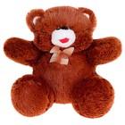 Мягкая игрушка «Медведь с бантом», цвета МИКС - Фото 3
