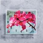 """Часы настенные, серия: Цветы, """"Розовая орхидея"""", 20х25  см, микс"""