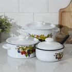 """Набор посуды """"Ягодный чай"""" 3 предмета: кастрюли 2 л, 3,5 л; ковш 1,5 л"""