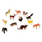 Набор фигурок животных «Удивительный мир», 12 предметов
