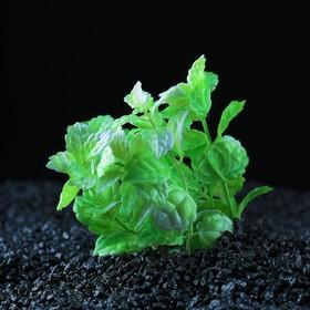 Растение искусственное аквариумное кустовое, 10 см, зеленый