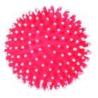 """Мяч Trixie """"игольчатый"""" Ф 10 см."""
