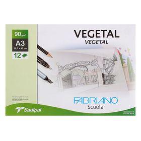 Калька для художественных работ, А3, 297 х 420 мм, Fabriano Vegetal, 12 листов, 90 г/м², конверт Ош