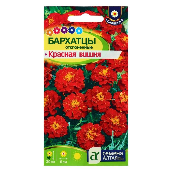 """Семена цветов Бархатцы """"Красная Вишня"""", О, 0,2 г."""