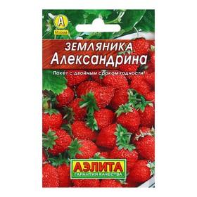 Семена Земляника 'Александрина', 0,05 г Ош