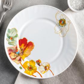 Тарелка обеденная Доляна «Радужные маки», d=23 см
