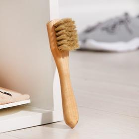Щётка для обуви для нанесения крема Тарри, 15×2 см, конский волос Ош