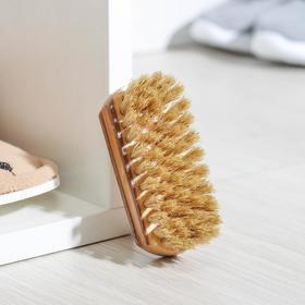 Щетка обувная, натуральная щетина 9,4 см, цвет МИКС Ош
