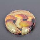 """Крышка металлическая, винтовая, литографированная, твист-офф III, d=6,6 см """"Элитная"""", толщина 0,18 мм, упаковка 20 шт - Фото 2"""