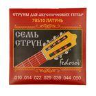 Струны для 7-струнной гитары  ( .010 - .050, латунная навивка на граненом керне)
