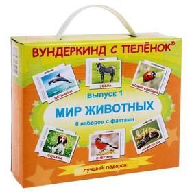 Подарочный набор «Выпуск 1. Мир животных»