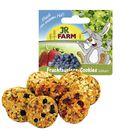Печенье JR FARM для грызунов, из непросеянной муки и фруктов, 80 г