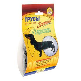 Трусы гигиенические для собак Зооник, №1 (обхват талии 25-31 см) Ош