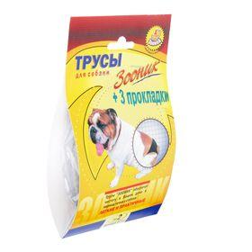 Трусы гигиенические для собак Зооник, №2 (обхват 32-39 см) Ош