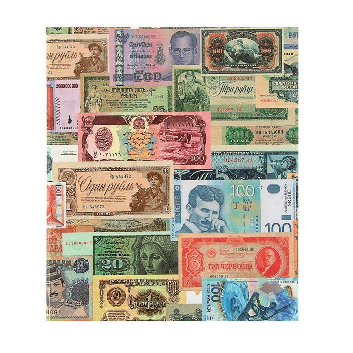 Альбом для бон на кольцах, 225 х 265 мм, «Для банкнот», обложка ламинированный картон, формат Оптима