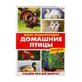 Мини-энциклопедия «Домашние птицы мира», 20 стр. Ош