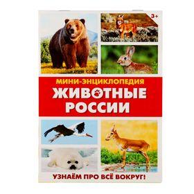 Мини-энциклопедия «Животные России», 20 стр. Ош