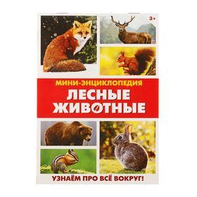 Мини-энциклопедия «Лесные животные», 20 стр. Ош