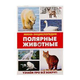 Мини-энциклопедия «Полярные животные», 20 стр. Ош