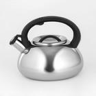 """Чайник со свистком 2,8 л """"Квант"""", фиксированная ручка, цвет чёрный"""