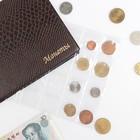 Лист для монет, горизонтальный, 250х200 мм, на 24 ячейки, 48х52 мм