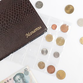 Лист для монет, горизонтальный, 250х200 мм, на 24 ячейки, 48х52 мм Ош