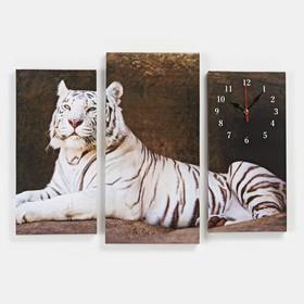 Часы настенные модульные «Белый тигр», 60 × 80 см Ош