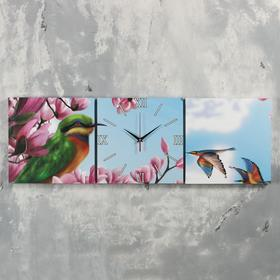 Часы настенные модульные «Колибри», 35 × 110 см Ош