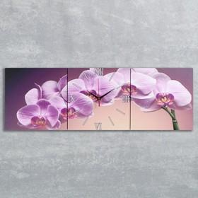 Часы настенные, серия: Цветы, модульные 'Фиолетовые орхидеи', 35х110  см, микс Ош