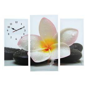 Часы настенные модульные «Цветок на камнях», 60 × 80 см Ош