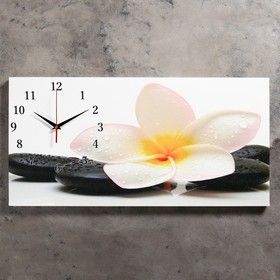 Часы настенные, серия: Цветы, на холсте 'Белый цветок на камнях', 40х76  см, микс Ош