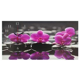 Часы настенные, серия: Цветы, на холсте 'Орхидеи на камнях', 40х76  см, микс Ош
