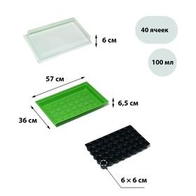 Мини-парник для рассады, 56,7 × 36 × 15,5 см, 1 вставка, 40 ячеек Ош