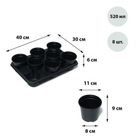 Набор для рассады: стаканы по 520 мл (8 шт.), поддон 40 × 31 см Ош