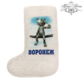 Магнит-валенок ручной работы «Воронеж»