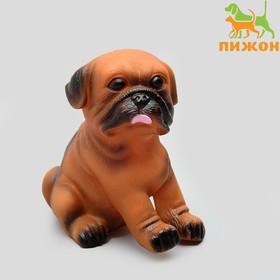 Игрушка пищащая 'Маленький друг' для собак, бульдог, 9 см Ош