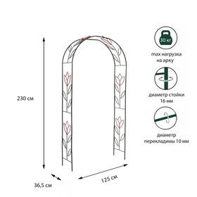 Арка садовая, разборная, 230 × 125 × 36.5 см, металл, зелёная, «Тюльпан» Ош