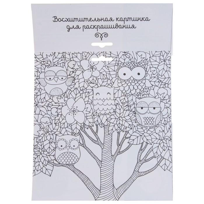 Набор для творчества. Фреска песком «Магическая сова» + 9 цветов песка по 4 гр, блёстки, стека