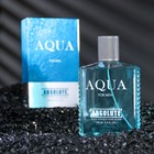 Туалетная вода мужская Absolute Aqua, 100 мл