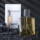 Туалетная вода мужская Absolute Platinum, 100 мл