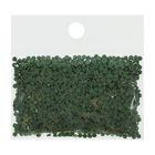 Стразы для алмазной вышивки, 10 гр, не клеевые, круглые d=2,5мм 367 Pistachio Green DK