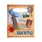 Пакет подарочный «Волгоград»