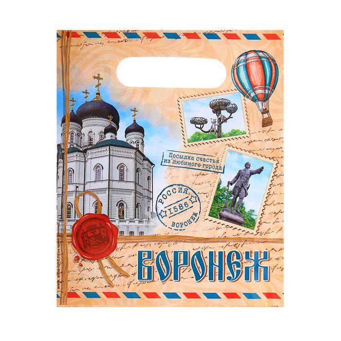 Пакет подарочный «Воронеж. Почтовый»